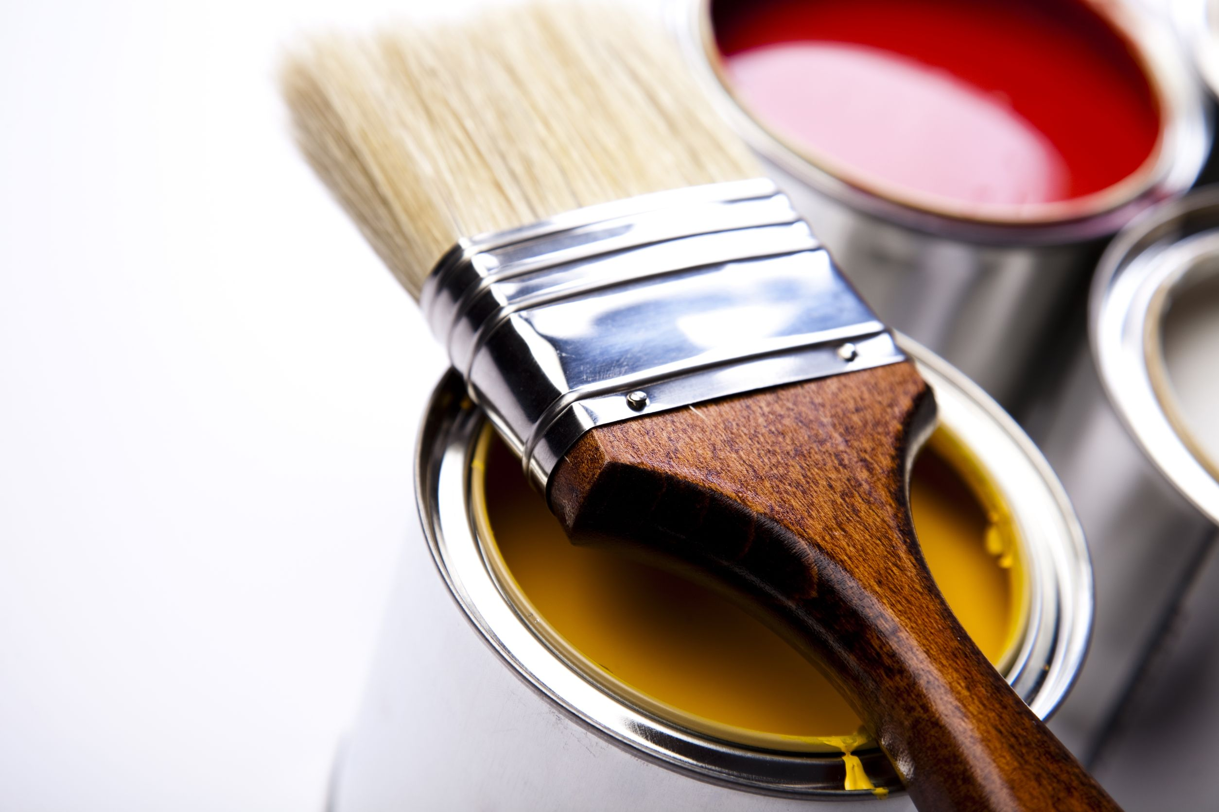 What Paint Do Professional Painters Use