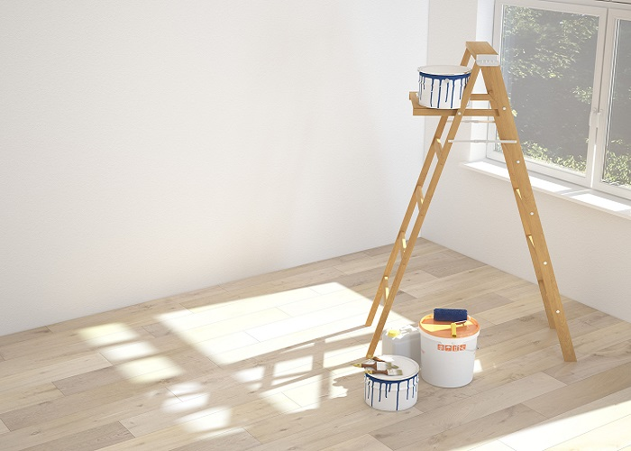 ladder for house painting